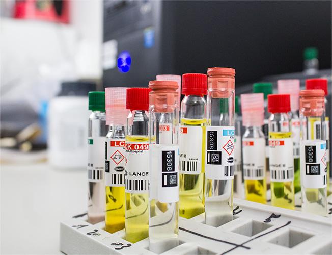 Ziegler Erden Labor